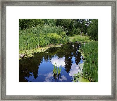 Framed Print featuring the photograph Reflections by Ben Upham III