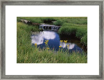 Reflections - Casa Vieja Meadows Framed Print by Soli Deo Gloria Wilderness And Wildlife Photography