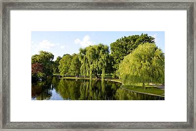Reflections Framed Print by Corinne Rhode