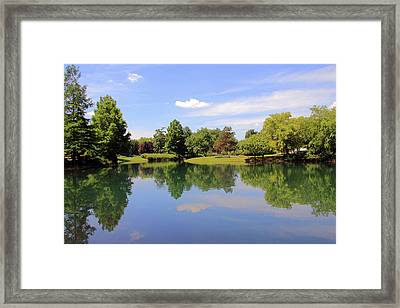 Reflections In A Pond Framed Print