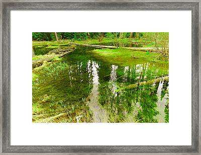 Reflections In A Pond Framed Print by Jeff Swan