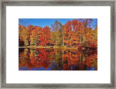 Reflections In Autumn Framed Print by Ed Sweeney