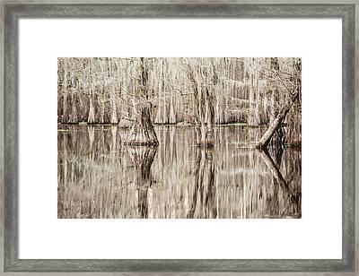 Reflections In Black Bayou Swamp Framed Print