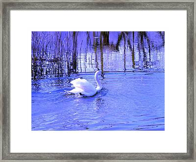 Reflections In Blue Framed Print by Kendall Eutemey