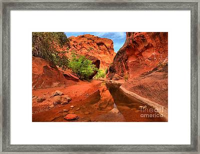 Reflections In Quail Creek Framed Print by Adam Jewell