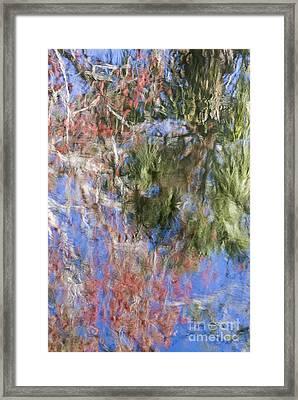 Reflections In The Hillsborough River Framed Print by John Arnaldi