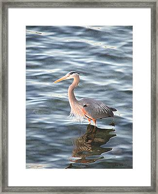 Reflections In The Water Framed Print by Judy  Waller