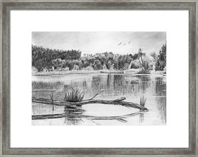 Reflections In The Water Framed Print by Nolan Clark