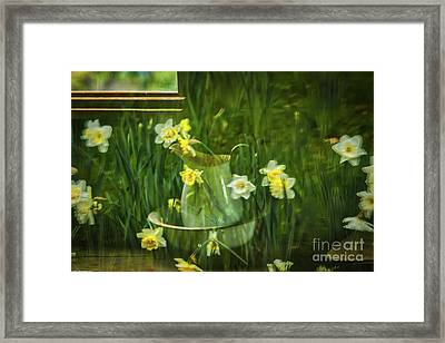 Reflections In The Window Framed Print