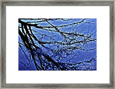 Reflections Framed Print by Joanne Smoley