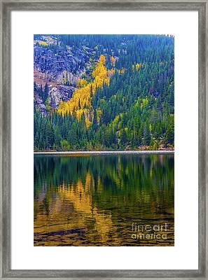 Reflections Framed Print by Jon Burch Photography
