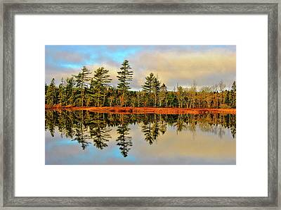 Framed Print featuring the photograph Reflections by Kathleen Sartoris
