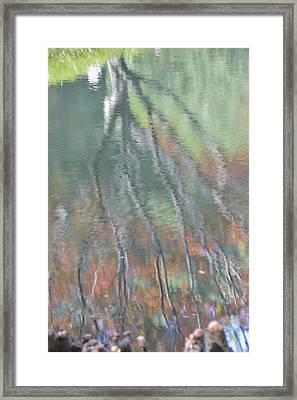 Reflections Framed Print by Linda Geiger