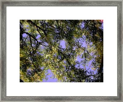 Reflections Framed Print by Marc Bittan