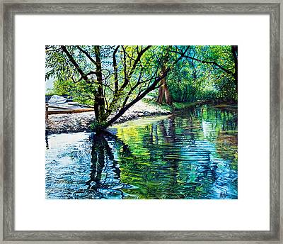 Trees Reflections Framed Print