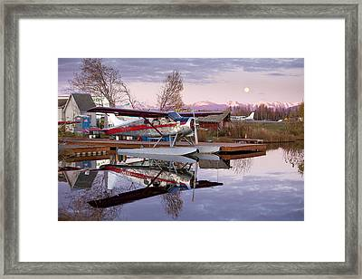 Reflections Of A Beaver Framed Print by Tim Grams