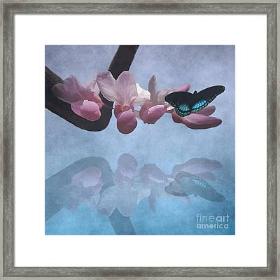 Reflections Of A Storm Brewing Framed Print