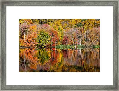 Reflections Of Autumn Framed Print by Karol Livote