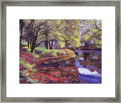 Reflections Of Azalea Blooms Framed Print
