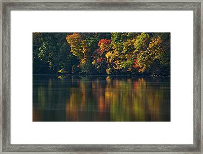 Reflections Of Colors Framed Print by Karol Livote