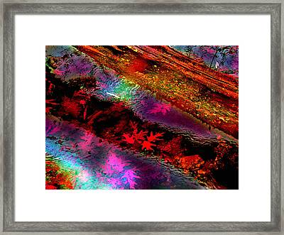 Reflections Of Fall Framed Print by Julie Grace