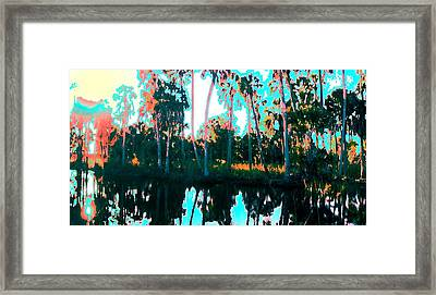 Reflections Of Palms Gulf Coast Florida Framed Print