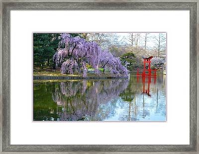 Reflections Of Spring  Framed Print by Sonali Gangane