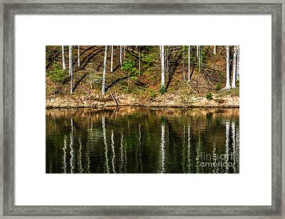 Reflections Of Spring Framed Print by Thomas R Fletcher