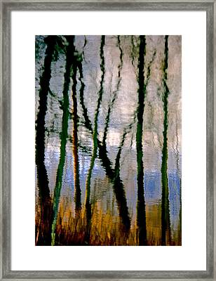 Reflections Of The Forrest Framed Print by Gillis Cone