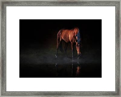 Reflections Of Wilma Framed Print