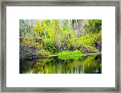 Framed Print featuring the photograph Reflections On A Beautiful Day by Madeline Ellis