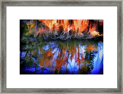 Reflections On A Small Pond Framed Print