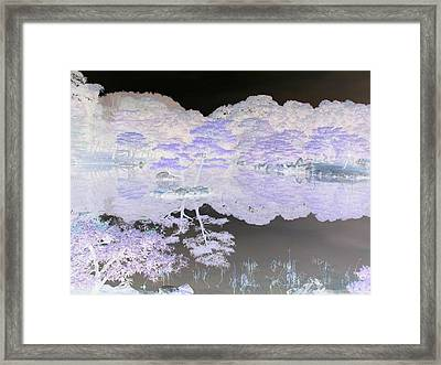 Reflections On A Surreal Pond Framed Print by Curtis Schauer