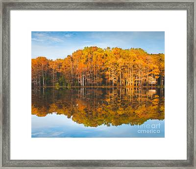 Reflections On Caddo Framed Print by Sonja Quintero