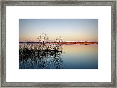 Reflections On Lake Jackson Tallahassee Framed Print