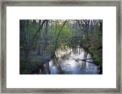 Framed Print featuring the photograph Reflections On The Congaree Creek by Skip Willits