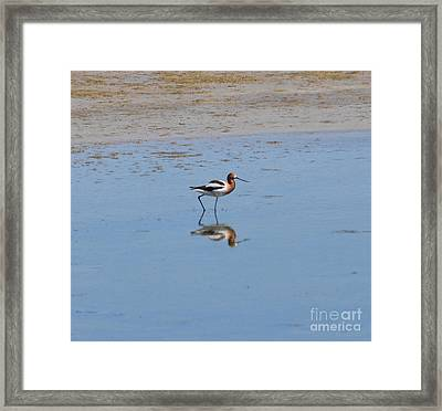 Reflections On The Great Salt Lake Framed Print