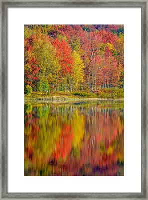 Canaan Valley West Virginia Reflections Framed Print