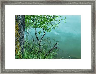 Reflections, Texture And Water Framed Print by James BO Insogna