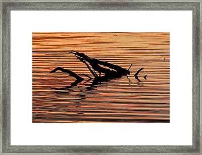 Reflective Abstract Framed Print