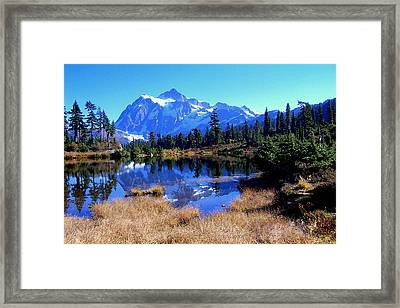 Reflective Beauty Framed Print