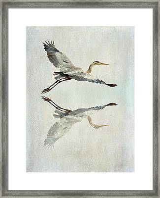 Reflective Flight Framed Print