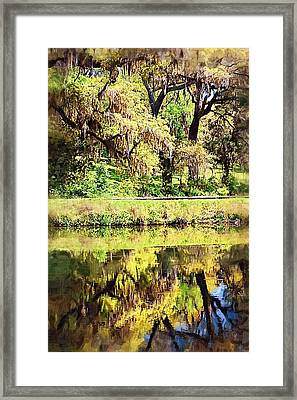Framed Print featuring the photograph Reflective Live Oaks by Donna Bentley