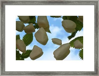 Reflexion Framed Print by Thomas Maes