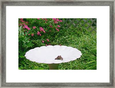 Framed Print featuring the digital art Refreshing by Barbara S Nickerson
