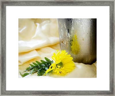 Refreshing Framed Print