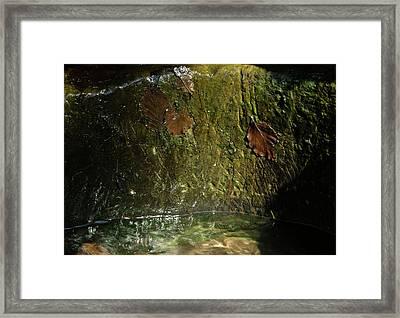 Refreshment Framed Print