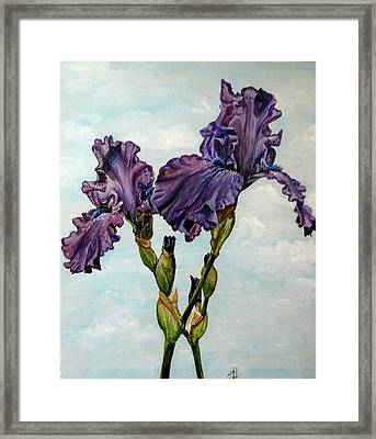 Regal Attitude Framed Print by Crystal  Harris-Donnelly
