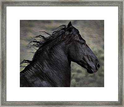 Regal Framed Print by Jean Hildebrant