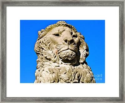 Regal Lion Framed Print by E Robert Dee